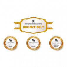 UH Energy Upstream Energy Data Analytics Micro-credentialing Program – Bronze Belt