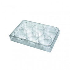 Cell Culture Microplate - Flat Bottom - 6 Wells - Costar