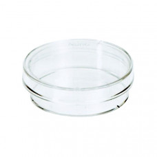 Cell Culture Petri Dish - 35mm x 10mm - 10 Pack